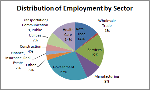 Empolyment in Oswego County by Sector Pie Chart